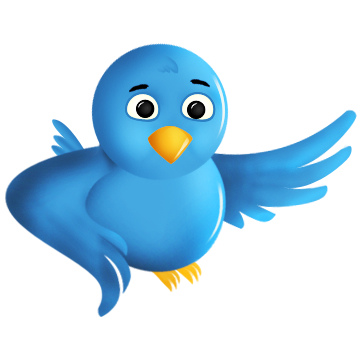 Curator has been Launched by Twitter